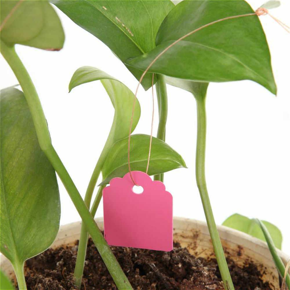 Suef Reusable 50pcs พืช Hang ป้ายเมล็ดสวนดอกไม้หม้อพลาสติกหมวดหมู่จำนวนแผ่น Hangting PVC Garden เครื่องมือ @ 2