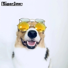 Fashion Dog Pet Glasses For Products Eye-wear Sunglasses Photos Props Accessories Supplies Cat MDD24