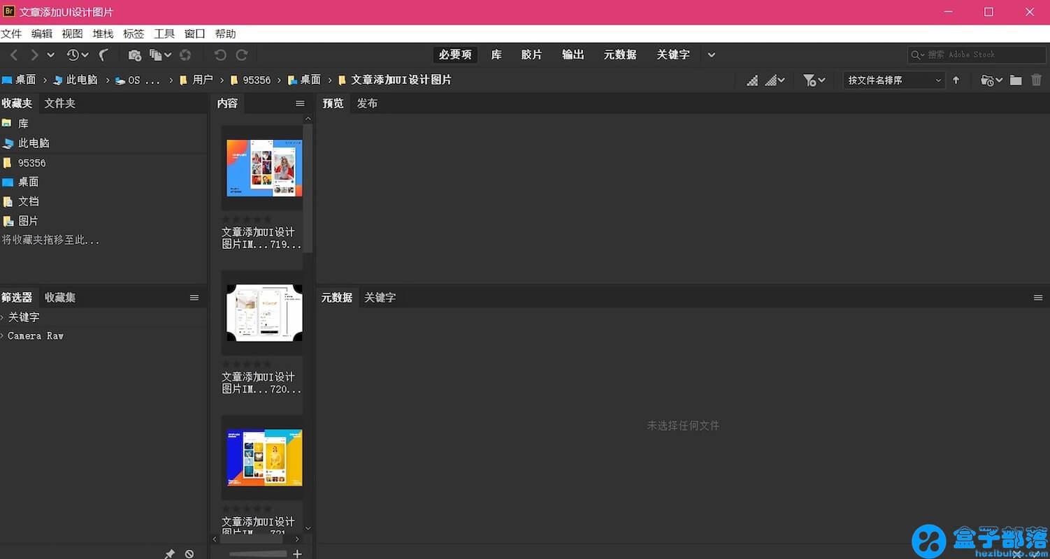Adobe Bridge for Mac 2019 v9.1.0 中文完整直装版