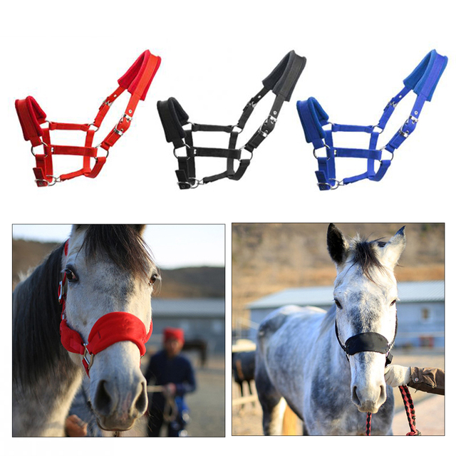 Padded Horse Halter Bridle/Rein - Durable & Comfortable 1