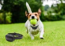 Gps беспроводной забор для собак systemin ground/aboveground