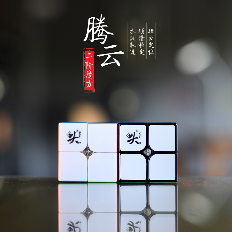 Dayan TengYun M 2x2x2 Magnetic Magic Speed Cube 2x2 Cubo Magico Educational Toys