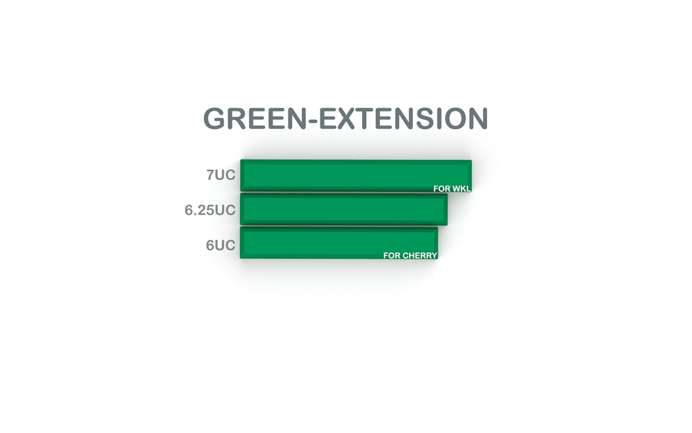 SA CRISIS GREEN EXTENSION