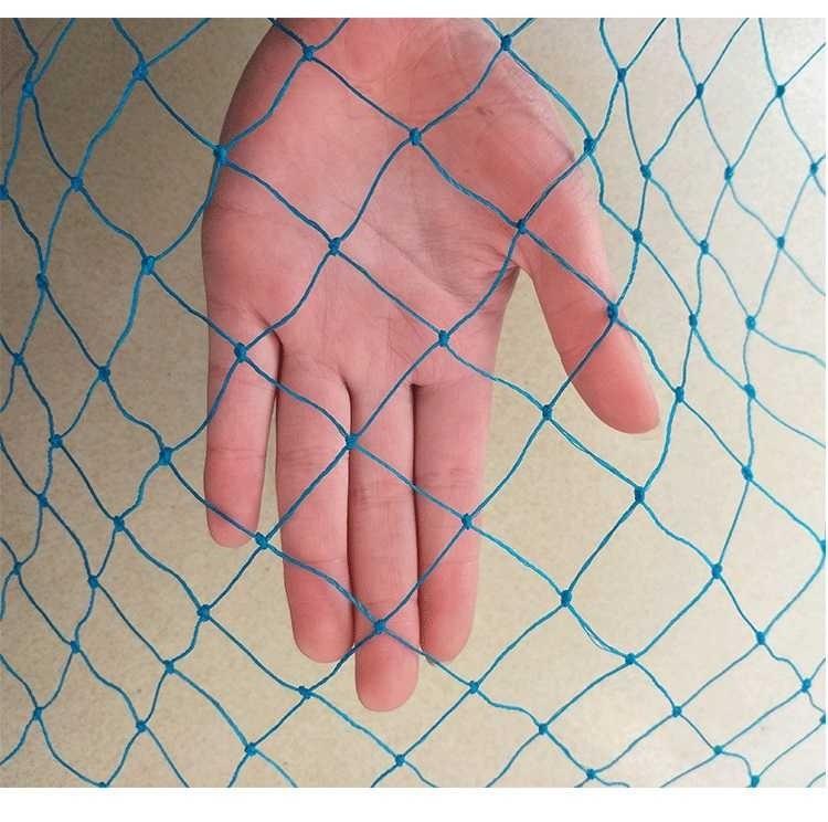 10m Blue plastic mesh  Wholesale garden fence mesh Plant vines climbing net A fence mesh Poultry breeding pheasant chicken fence