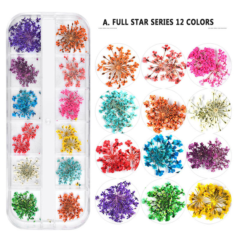12 Colors/Set Kids Dried Flower Toys For Nail Art Decorations Nail Flower Dried Flower Ornaments Children Party Festival Decor