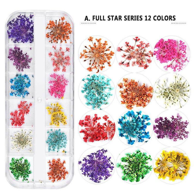 12 Colors/Set Kids Dried Flower Toys For Nail Art Decorations Nail Flower Dried Flower Ornaments Children Party Festival Decor