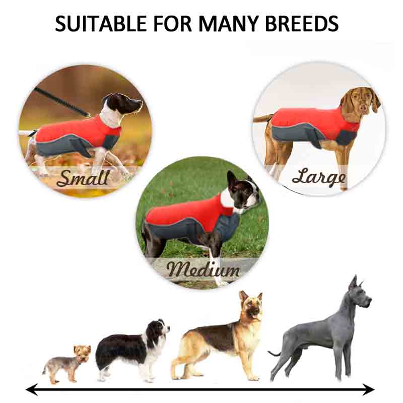 MySudui Small Big Dog Clothes Winter Waterproof Chihuahua Bulldog Fashion Dog Cloth Clothing For Dog Winter Coat Warm Ropa Perro (10)