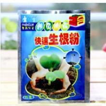 Fast-Rooting-Powder Medicinal-Hormone Bonsai Seedling Regulators-Growing Plant Germination