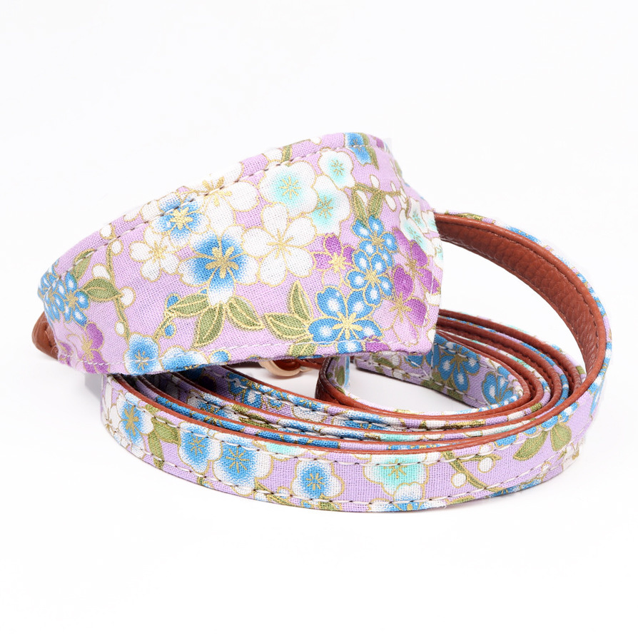 Amin Lattice New Style Manufacturers Direct Selling Bow Neck Ring And Wind Dog Bibs Collocation Pet Traction Rope