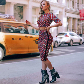 2 Piece Set Women Skirt and Top Sexy Crop Skrt Office Ladies Two Plaid Leopard Matching 2020