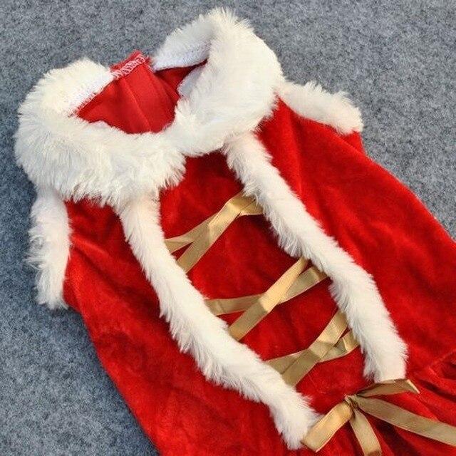 Christmas Dog Dress  6