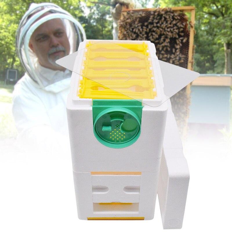 Sunflower 1PCS Beekeeping Queen breeding//Rearing Mini polystyrene mating Nucs hive,DIY Beekeeping