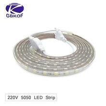 Водонепроницаемый SMD 5050 AC220V Светодиодные ленты гибкий светильник 60 светодиодный s/m RGB светодиодный лента светодиодный светильник с Мощность штепсельная Вилка для передачи данных 1 M/2 M/3m/5 M/6 м/10 м/15 м /25 м