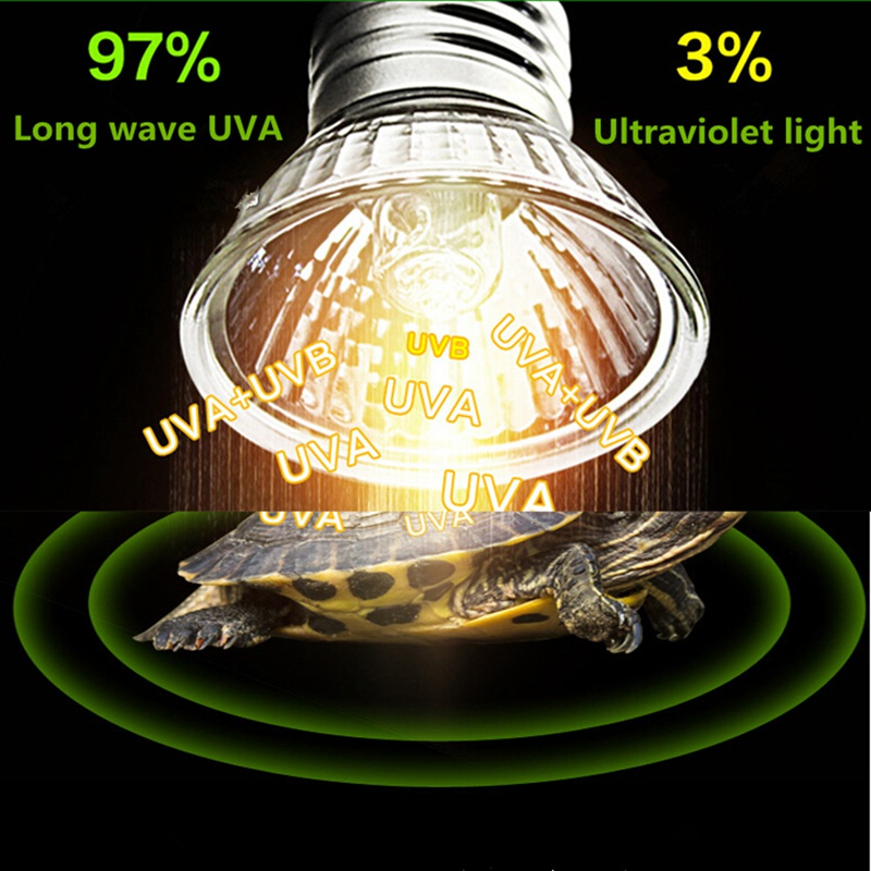 25/50/75W UVA+UVB 3.0 Reptile Lamp Bulb Turtle Basking UV Light Bulbs Heating Lamp Amphibians Lizards Temperature Controller