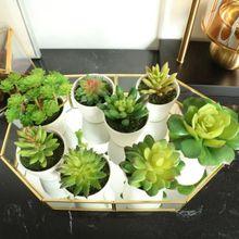Искусственные мини растения яркий кактус суккулент с вазой для офисного стола домашние декоративные растения