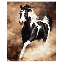 DIY Oil Painting for Adults Kids Paint By Number Kit Digital Horse 16X20 Inches