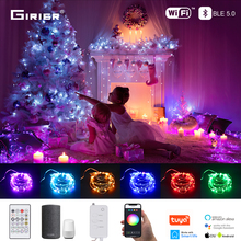 LED String Fairy Lights RGB Wifi Bluetooth String Light for Festival Decoration Compatible with Alexa Google Home Smart Life App
