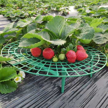 NEW 1/5Pcs Strawberry Plant Growing Supports Keep Strawberries Off Rot in the Rainy Day 5Pcs/sets gardening tools and equipment plant fungicides flowers and trees carbendazim systemic fungicide to prevent the root rot stem rot powdery mildew
