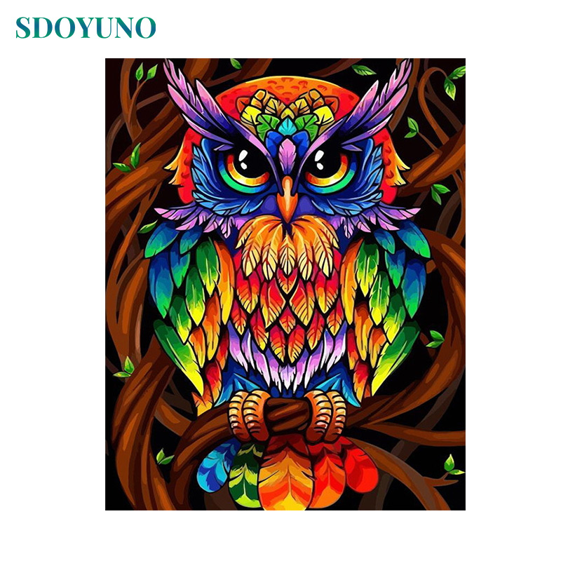 SDOYUNO 60x75cm Painting By Numbers Colourful Owl  DIY Frameless Pictures By Numbers On Canvas Wall Art For Home Decor Animals