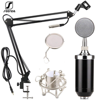 SeenDa Condenser Microphone Studio Recording Wired Pc Computer Mic With Suspension Arm Pop Filter And Shock Mount