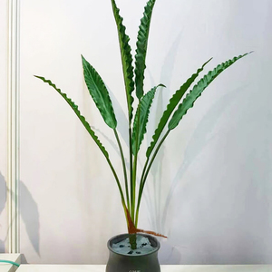 Image 5 - 80cm 7fork Large Artificial Tropical Tree Fake Plastic Plant Branch Big Green Palm Tree Monstera Foliage for Autumn Home Decor