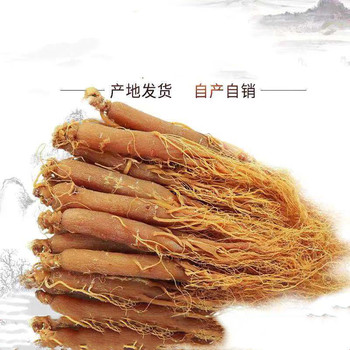 10 years Organic High Quality  without sugar Ginseng Red Ginseng  Korean Ginseng Enhance immunity, fight cancer and prolong life red meat cures cancer