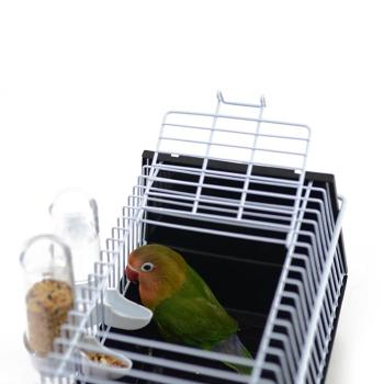 Birds Supplies Portable Bird Cage Parrot Transparent Transport Cage Plastic And Wire Bird Travel Carrier With Two Feeders 3