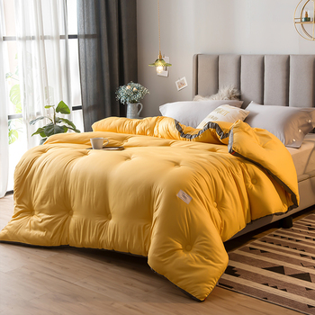 Super King Sizes Comforter 4D Luxury Home Hotel Down Duvet Silk Down Quilt Very Warm Winter Thick Blanket/Soft Duvet Quilt