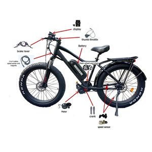 Image 4 - Bafang 500W 48V BBS02 Bici Elettrica Metà Azionamento Del Motore 8fun BBS02B Ebike Kit di Conversione Bicicletta Elettrica Motore Potente c18 Display