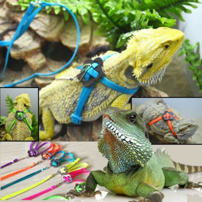 Lizard Leash 1pc Reptile Lizard Gecko Bearded Dragon Harness And Leash Adjustable Strap Pet Accessories Pet Products
