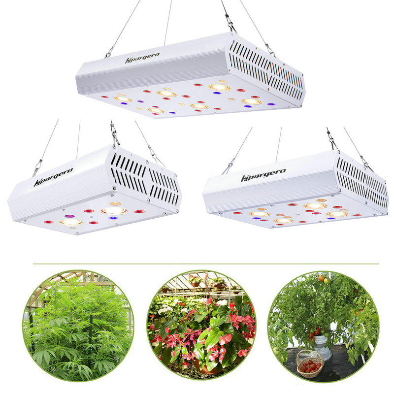 400W 800W 1200W LED Grow Light 3000K COB Full Spectrum Including UV IR Daisy Chain For Indoor Hydroponics Plants