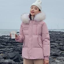 Women Down Cotton Jacket Winter Parker Coat Fashion Female Student Big Fur Hooded