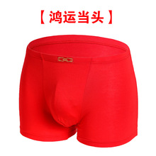 Born In the Year Of The Birth Red Underwear Male Modell Festive Stamping Boxers size Midwaist Young Mens Na001