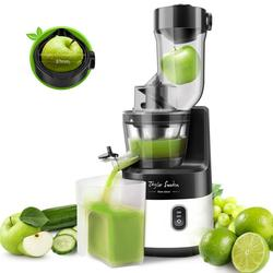 Taylor Swoden Slow joy - cold press juice extractor Slow extraction blender to make juices jams and sorbets Silent motor