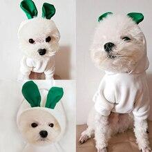 Ropa blanca con Orejas de conejo para mascotas, abrigo para perros pequeños, Sudadera con capucha para perros y gatos, trajes para mascotas
