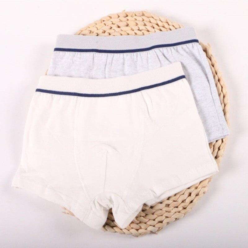 2 Pcs/Lot Boys Underwear Pure Color Kids Shorts Panties Cotton Baby Children Boxer for Teenager Underpants 2-10Y 5