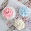 Rose Flower soap mold for soap Making silicone soap molds Aromatherapy plaster mold