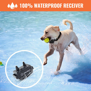 Image 4 - Petrainer 620A 1 300m Rechargeable&Waterproof Dog Training Collar Training Stimulations With LCD Screen