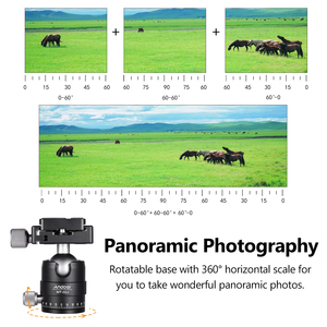 Image 2 - فيديو مدمج بانوراما ترايبود الكرة رئيس كاميرا Ballhead جبل محول 360 درجة دوران سبائك الألومنيوم مع 1/4 بوصة المسمار QR لوحة