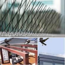 25 centimetri In Acciaio Inox Uccello Repellente Spikes Eco-Friendly Anti Piccione Nail Uccello Deterrente Strumento Per Gufo Piccoli Uccelli Recinzione