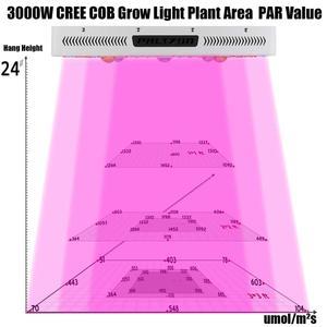 Image 5 - Phlizon rosną lampy cob led rosną światła 3000W pełnozakresowe led kweeklampen rosnące światło dla roślin kwitnienia dropshipping