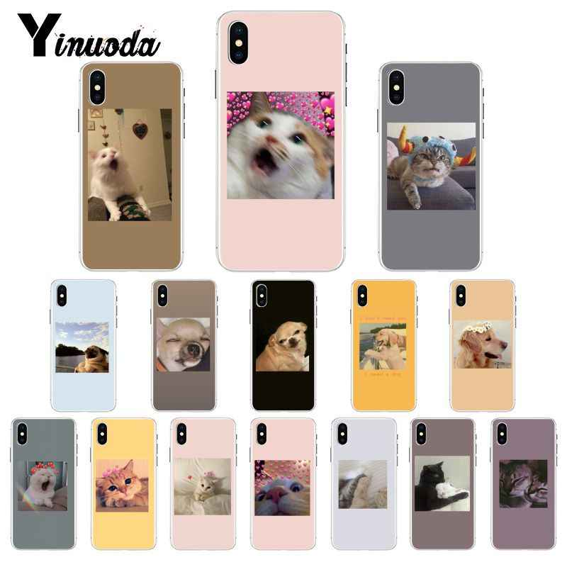 Yinuoda funny cat dog mood Customer High Quality Phone Case for iPhone 8 7 6 6S X XS MAX 5 5S SE XR 10 11 Pro Max