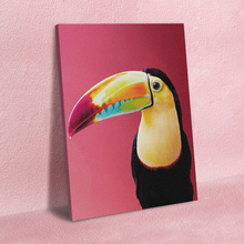 Bird Poster Toucan Canvas Paintings Animal-Pictures Wall Artwork Living-Room No-Framework