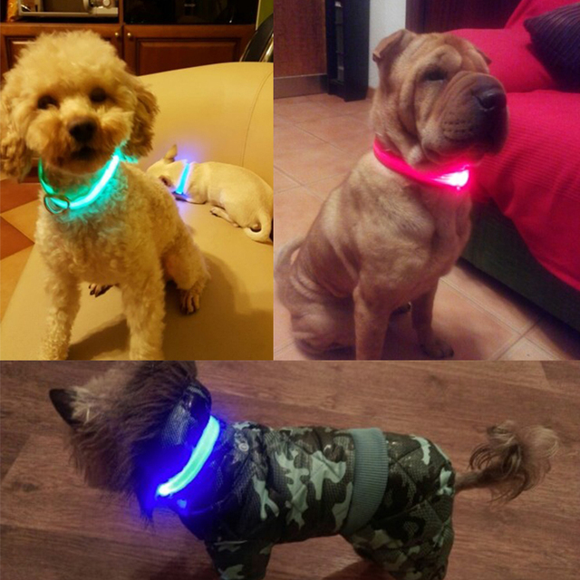Glow In The Dark Dog & Cat Collar 5