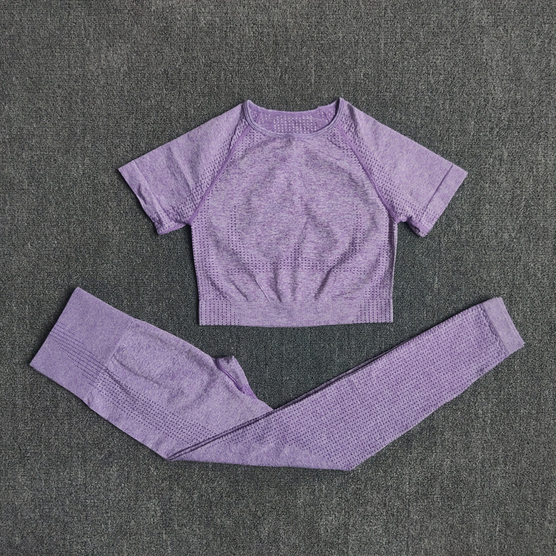 2 PCS Set Seamless Yoga Set Women Workout Gym Clothes Fitness Short Sleeve Crop Top Shirt High Waist Leggings Pants Sports Suits