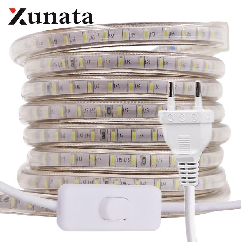 220V LED אור רצועת 3014 SMD Waterproof 120 נוריות/m חיצוני חבל LED רצועת אור לבן/חם לבן/כחול האיחוד האירופי plug מתג הפעלהפסי תאורת LED   -