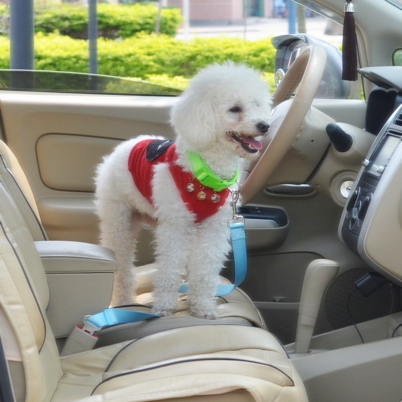 Thick Car Safety Belt For Pet Nylon Durable Material Dog Hand Holding Rope Pet Supplies