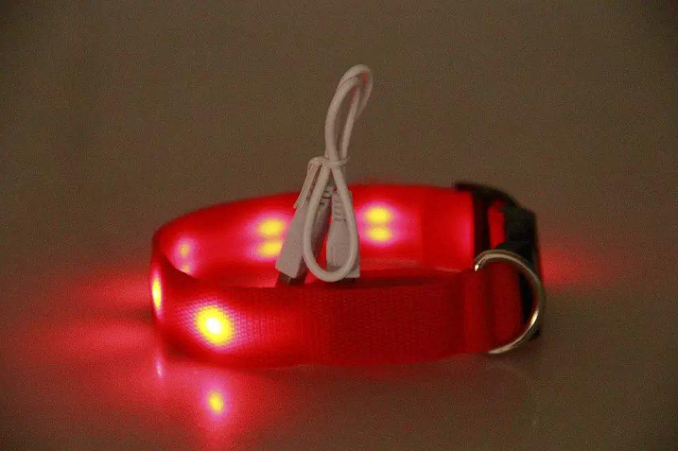 Charging LED Luminous Pet Collar Collar Cat Teddy Golden Retriever Dog Night Light Neck Ring USB Charging Pet Supplies