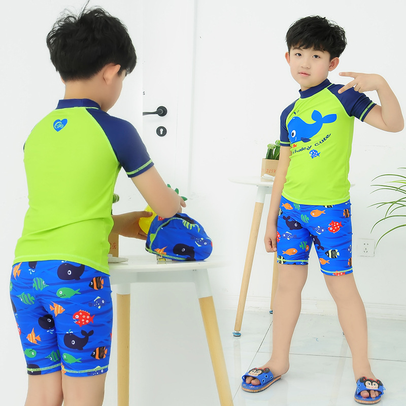New Style KID'S Swimwear BOY'S Swimming Trunks Big Boy Set Split Type Cute Cartoon Quick-Dry Bathing Suit Send Swim Cap