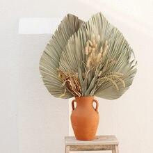 Fleur séchée en feuille de palmier en éventail, 1 pièce, réception de fenêtre, décoration murale, bricolage artistique, pour Arrangement d'arc de mariage